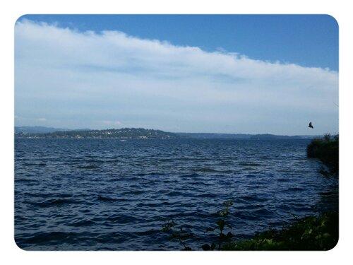 Blick auf den Lake Washington